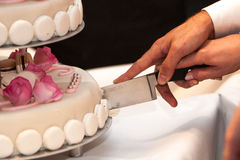 Noivos que cortam o weddingcake fotografia de stock royalty free