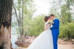 Noivos que estão de beijo no fundo da natureza fotos de stock royalty free