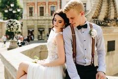 Noivos que levantam na fonte Imagens de Stock Royalty Free