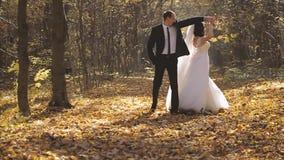 Noivos Walk do casamento em Autumn Forest vídeos de arquivo
