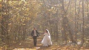 Noivos Walk do casamento em Autumn Forest filme