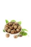 Noix avec des feuilles de noix dans un panier Photos stock