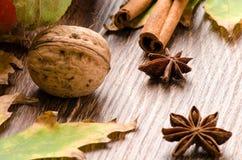 Noix, bâtons de cannelle, anis d'étoile et feuilles d'automne Photos libres de droits
