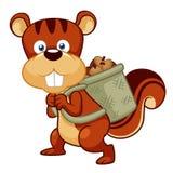 Noix d'amas d'écureuil de bande dessinée Photos stock