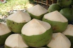 noix de coco Image stock