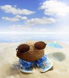 Noix de coco au concept d'amusement de plage photo stock