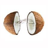 Noix de coco avec éclabousser le lait Image stock