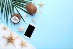 Noix de coco avec des coquillages photos stock