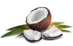 Noix de coco avec des feuilles Photo stock