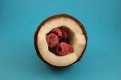 Noix de coco avec des framboises Photo libre de droits