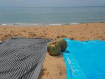 Noix de coco avec des saveurs de la mer photographie stock