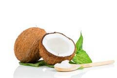 Noix de coco avec la feuille verte photographie stock libre de droits