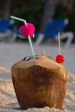 Noix de coco avec la paille à boire Images libres de droits