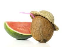 Noix de coco avec le melon Photos stock