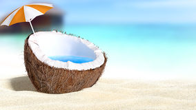 Noix de coco coupée Photographie stock libre de droits