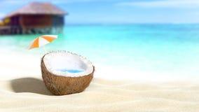 Noix de coco coupée Images stock