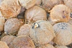 Noix de coco d'épluchage Photos stock