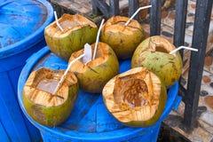 Noix de coco dans des déchets photos libres de droits