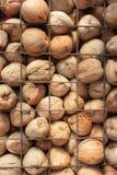 Noix de coco dans la barre de fer Photographie stock