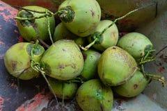 Noix de coco dans le chariot photographie stock