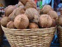 Noix de coco dans le panier Photographie stock