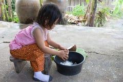 Noix de coco de éraflure de fille Image stock
