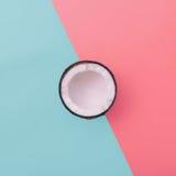 Noix de coco de mode sur le fond exclusif Style minimal Photographie stock libre de droits