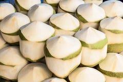 noix de coco de parfum Image stock