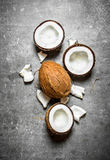 Noix de coco dures fraîches Photo stock