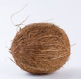 Noix de coco en détail Images stock