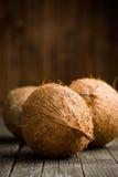 Noix de coco entières Photo libre de droits