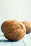 Noix de coco entières Image libre de droits