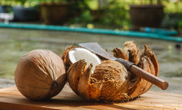 Noix de coco et couteau Photographie stock libre de droits