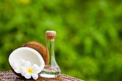 Noix de coco et huile de noix de coco Photographie stock libre de droits