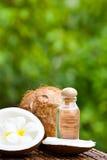 Noix de coco et huile de noix de coco Photos libres de droits