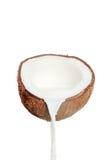 Noix de coco et lait frais Photos libres de droits
