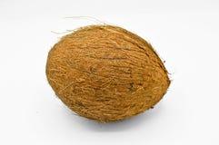 Noix de coco exotique de fruit avec la surface brune image stock