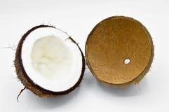 Noix de coco exotique de fruit avec la surface brune image libre de droits