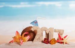 Noix de coco, numéro 2017, étoiles de mer, fleur et cadeaux de Noël contre la mer Photo libre de droits