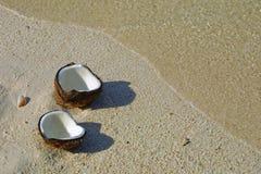 Noix de coco ouverte Photos stock