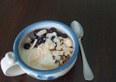 Noix de coco pour le petit déjeuner Image stock