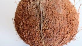 Noix de coco sèche Photo stock