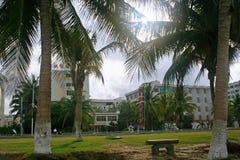 Noix de coco de Sanya photos libres de droits