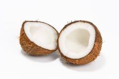 Noix de coco sur le fond blanc Image libre de droits
