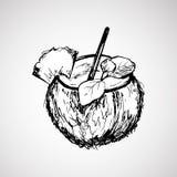 Noix de coco tirée par la main avec le bâton Photographie stock libre de droits