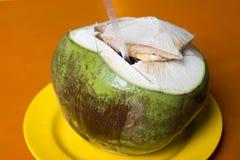 Noix de coco verte Photographie stock libre de droits