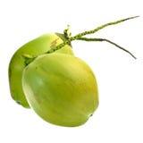 Noix de coco verte d'isolement sur le fond blanc Image libre de droits