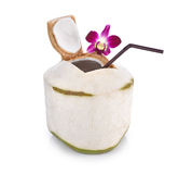 Noix de coco vertes avec la paille à boire d'isolement sur le fond blanc Image stock