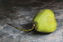 Noix de coco vertes fraîches sur le plancher en béton Images stock