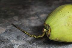 Noix de coco vertes fraîches sur le plancher en béton Photographie stock libre de droits